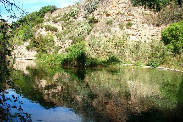 Des baignades uniques à Valencia